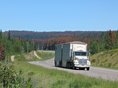 British Columbia Trucking Association or BCTA recognized for hard work