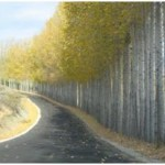 repaving roads near Oliver, BC