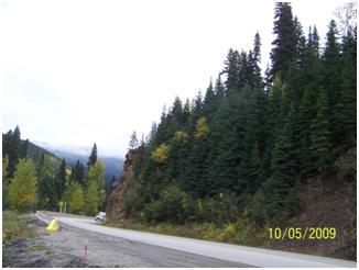 Pine Pass construction