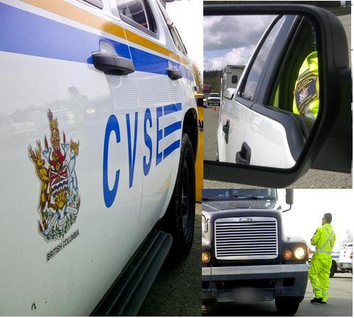 CVSE: Five Frequently Asked Questions