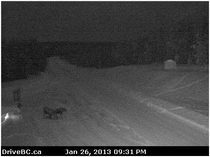 BCHwy Webcam BChwycams DriveBC Moose Wildlife
