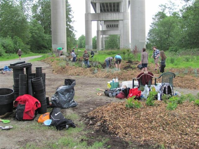3 - 2012_05_18 - Area 1 Rain Garden - First Planting
