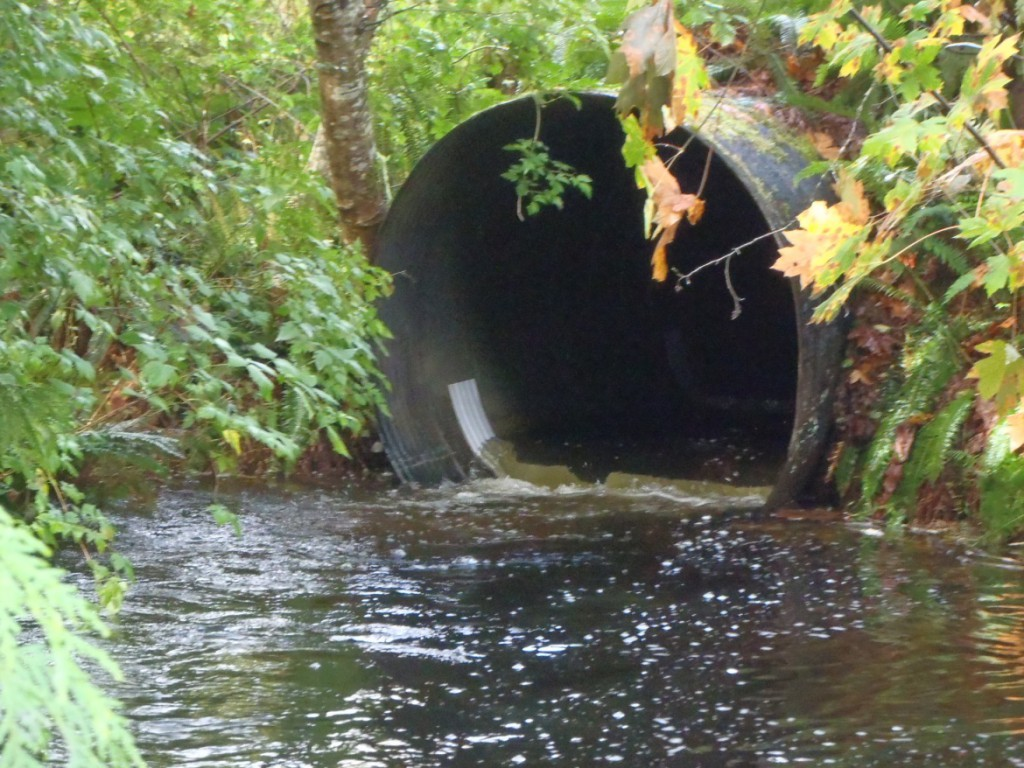 Backflooded culvert