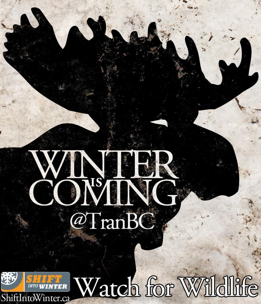 Winter is Coming_Moose