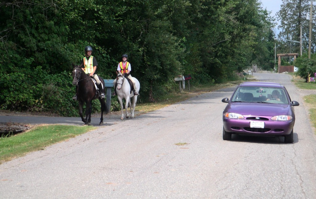 How to Share the Road Safely with Horseback Riders