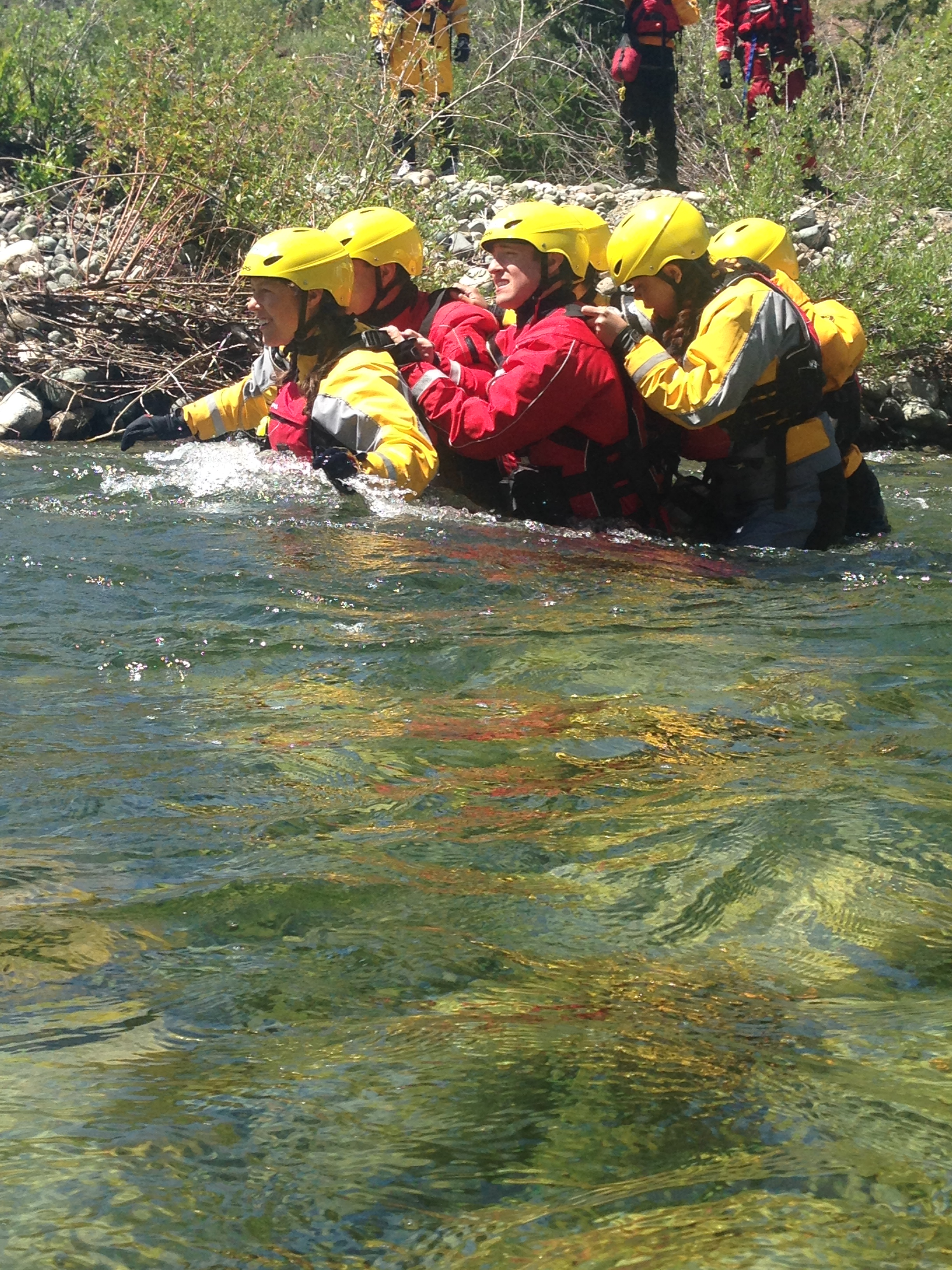 Working as a pack during swift water rescue training.