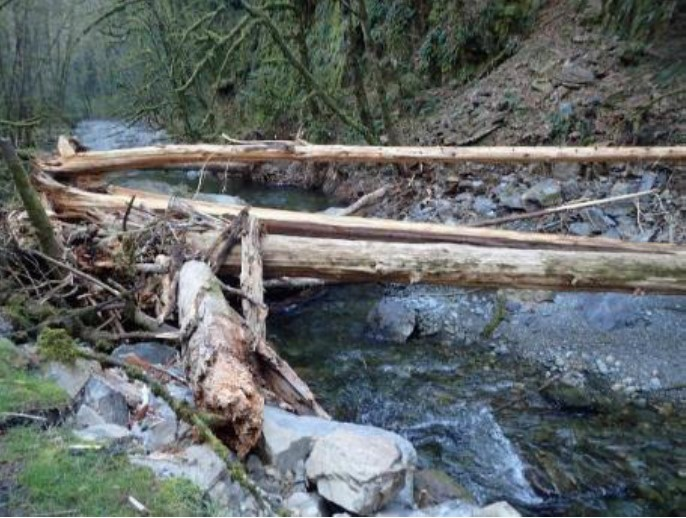 "A ""before restoration"" shot of the debris jam and rockfall along the Goldstream River."