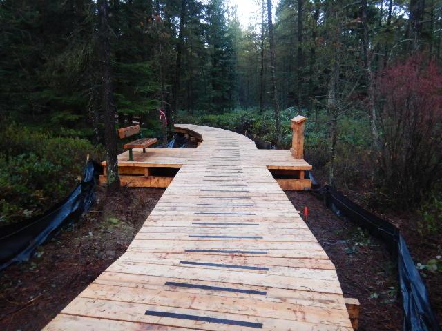 Burns bog boardwalk