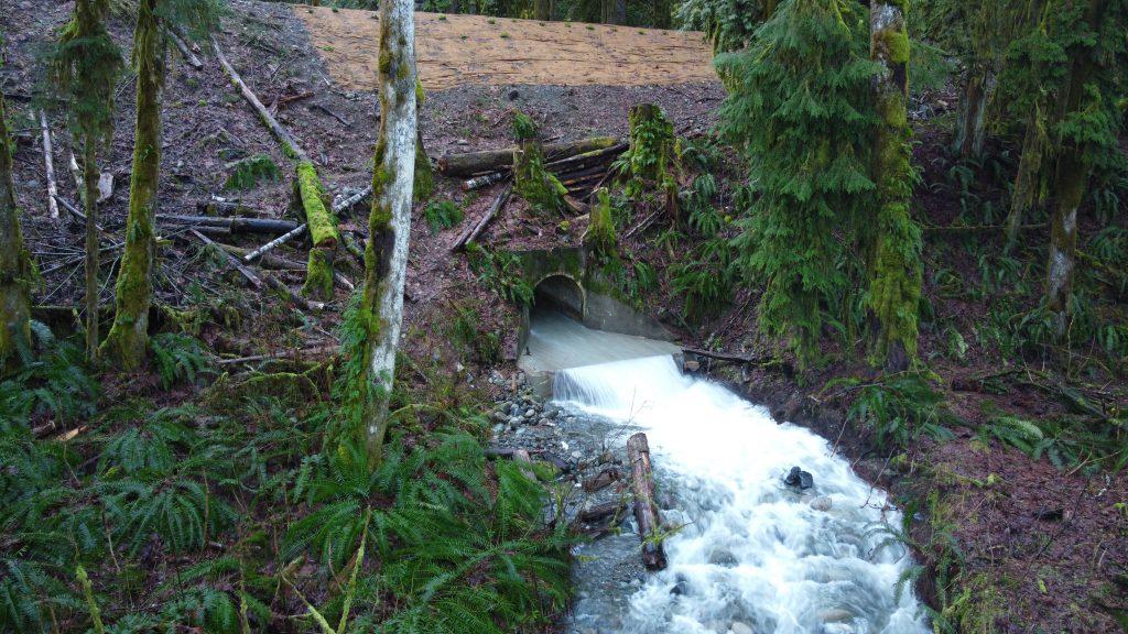 water flowing through culvert